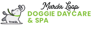 Marda Loop Doggie Daycare & Spa